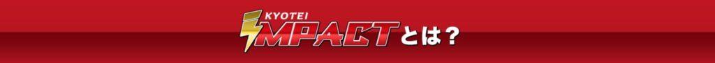 IMPACTインパクト競艇予想サイト検証買い目的中実績3
